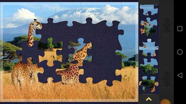 Magic Jigsaw Puzzles - digital puzzles app by ZiMAD